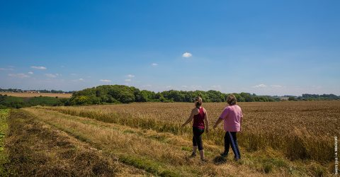 Deux randonneuses à travers champs
