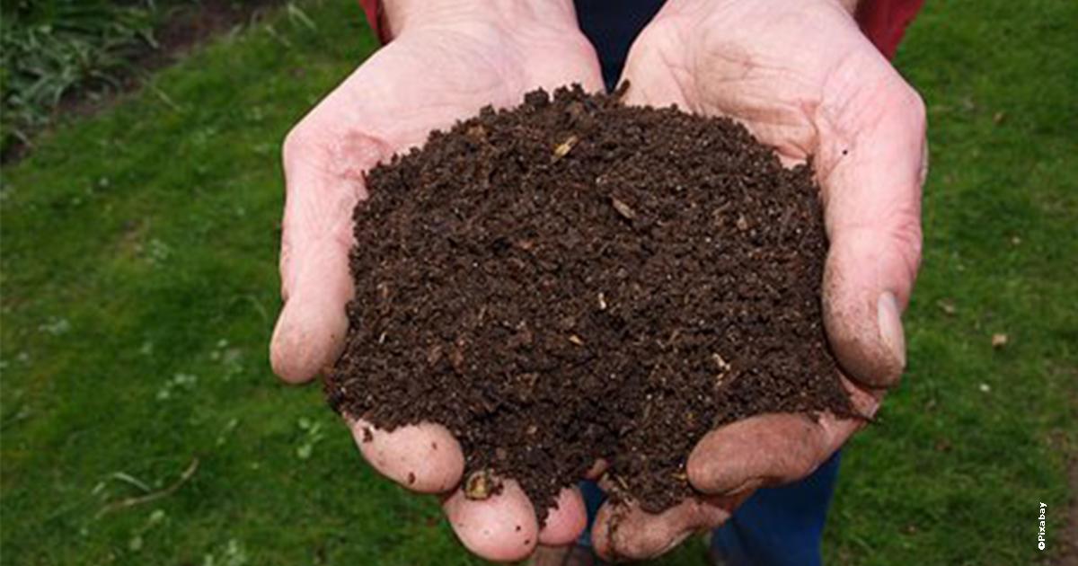 Engrais naturel issu du compost