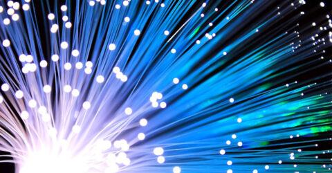 Cables de fibre optique lumineux